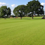 Turf in Cheadle